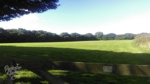 Puckator Farm camping field