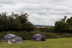 Puckator Farm Camp Out weekend August 2014